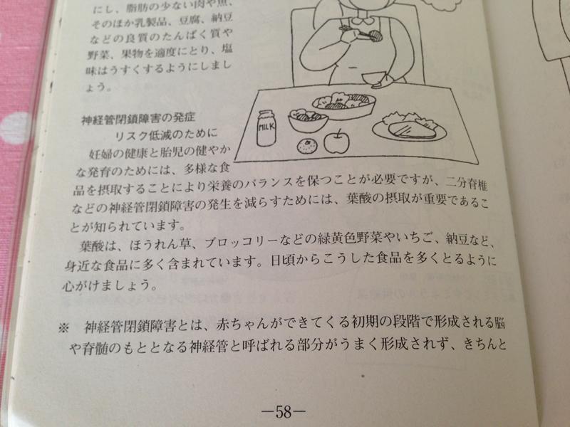 母子手帳に書かれている葉酸について